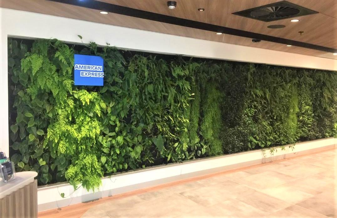 Green Living Wall, Amex Lounge Sydney T1