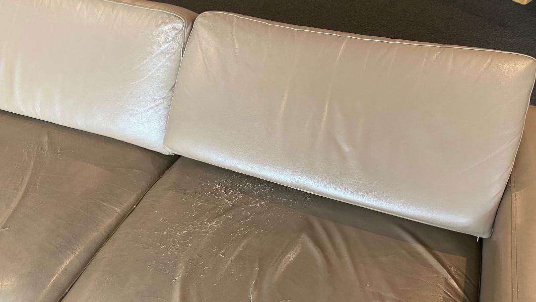 Sofa - Rex Lounge, Sydney Airport